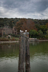Two seagulls on a pillar coming out of the lake shore side pier old Italy lake town