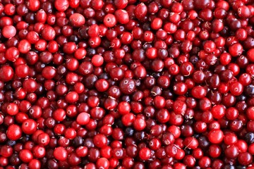 Ripe fresh cranberries as natural, food, berries background