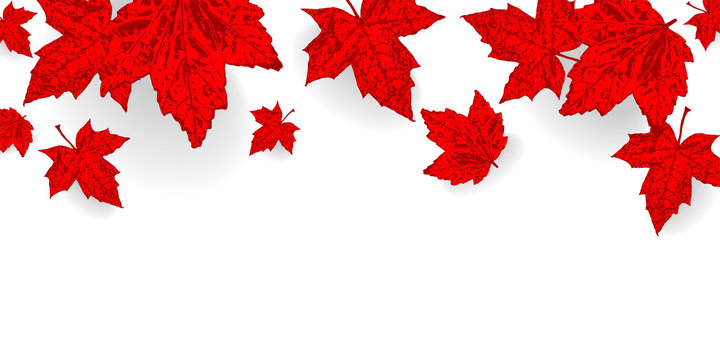 Canadian Maple Leaf Pattern Stock Photos And Royalty Free Images Vectors And Illustrations Adobe Stock