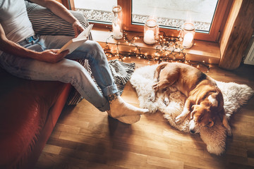 Man reading book on the cozy couch near slipping his beagle dog on sheepskin in cozy home atmosphere. Peaceful moments of cozy home concept image.