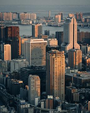 Tokyo Japan Skyline Aerial View