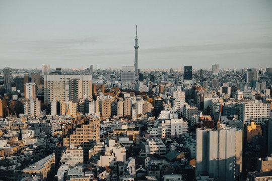 View of Tokyo Skytree Skyline