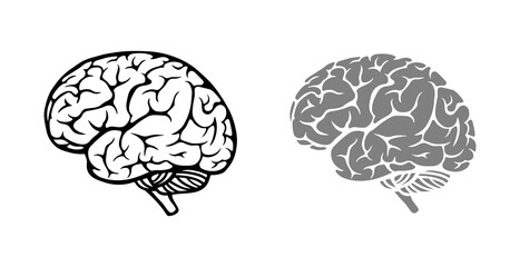 Brain. Contoured and filled silhouette. Simple design.