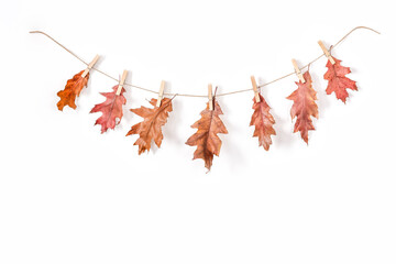 Autumn composition of garlands on a rustic string. Autumn leaves and flowers, acorns, pine cones, dried spices, washing clips. Place for your decorations or text, top view, flat lay. Copy space, White