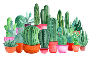 composition of watercolor green cacti, succulents, haworthia on a white background, hand-drawing, greeting card
