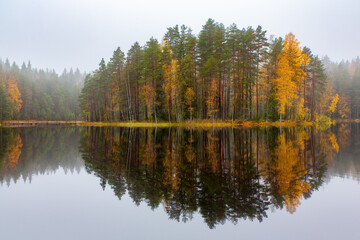 Papiers peints Cascades Finnish forest reflecting in water during fall