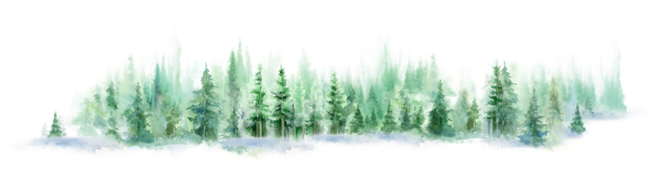 Landscape of foggy forest, winter hill. Wild nature, frozen, misty, taiga. watercolor background