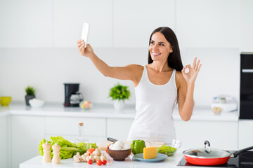 Portrait of positive house wife culinary blogger influencer make selfie video call show how she...