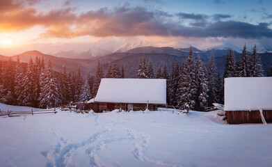 Wall Mural - Perfect moment in alpine highlands. Location Carpathian, Ukraine, Europe.