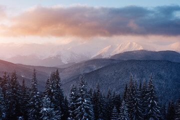 Wall Mural - Perfect morning moment in alpine highlands.