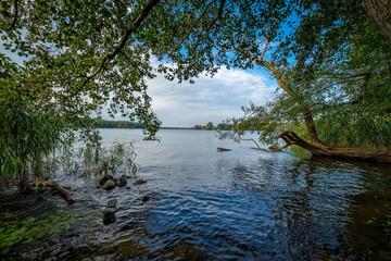 Baumbestandenes Ufer der Havel in Berlin-Heiligensee
