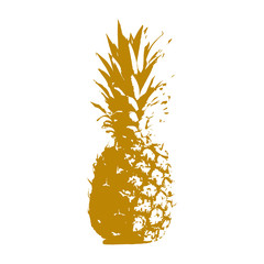 Pineapple illustration isolated on a white background. Icon, sign. Art logo design