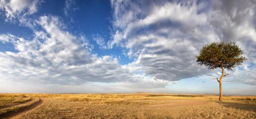 Panorama of the grasslands of the Masai Mara