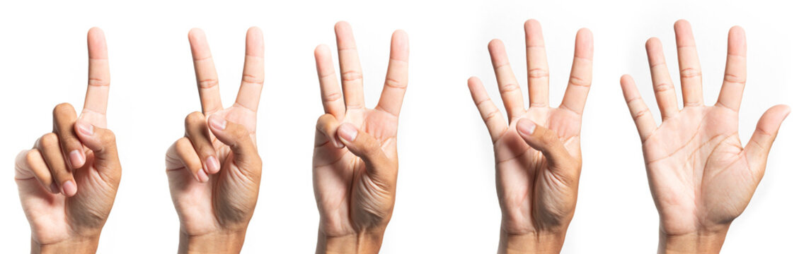 five fingers count signs isolated on white background with Clipping path included. Communication gestures concept