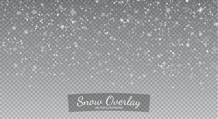 Snow  isolated on transparent background. Falling Snow Overlay Background. Snowfall Winter Christmas Background. Vector Illustration.