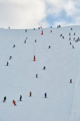 Fototapete - Skiing slope with many unrecognizable skiers coming down