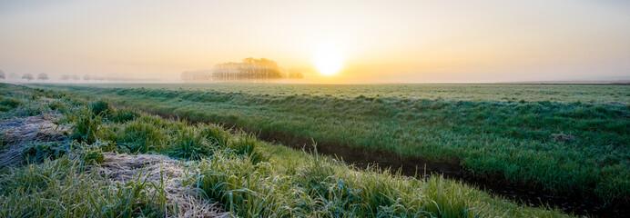 Photo sur Aluminium Kaki Leichter Morgennebel mit Sonnenaufgang über ein Naturschutzgebiet