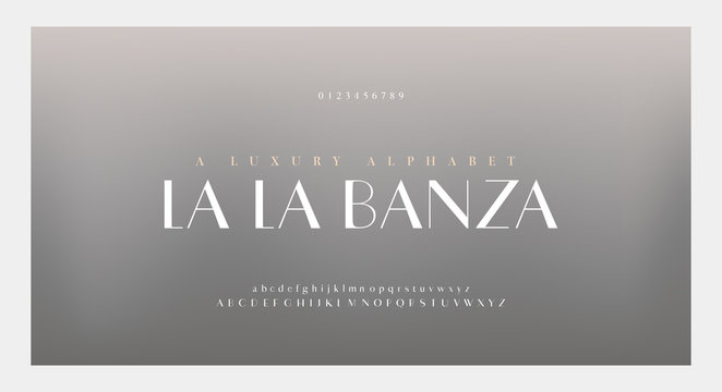 Elegant alphabet letters font and number. Classic Lettering Minimal Fashion Designs. Typography fonts numbers serif uppercase and lowercase. vector illustration