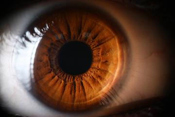 Keuken foto achterwand Iris Human brown eye supermacro closeup