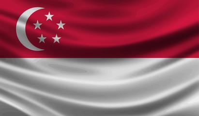 Singapore wave Flag vector illustration