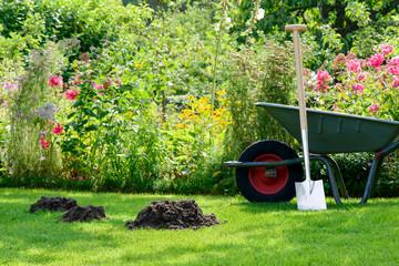 Maulwurfshaufen im Garten