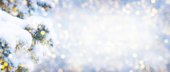 Tuinposter Wit Winter fir tree christmas scene with sunlight.