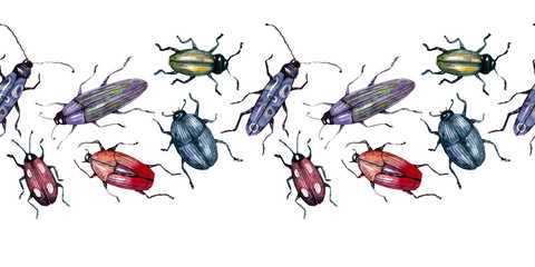 Watercolor background picture Border with beetles
