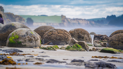 Poster Cappuccino Moeraki Boulders On Otago coast Of New Zealand