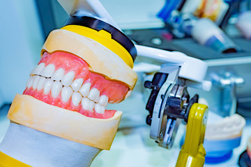 Model of human jaws close-up. Dentistry. Preparation for dental prosthetics. Correction of bite. Orthodontics. Elimination of problems with teeth. Dental technician workplace equipment.