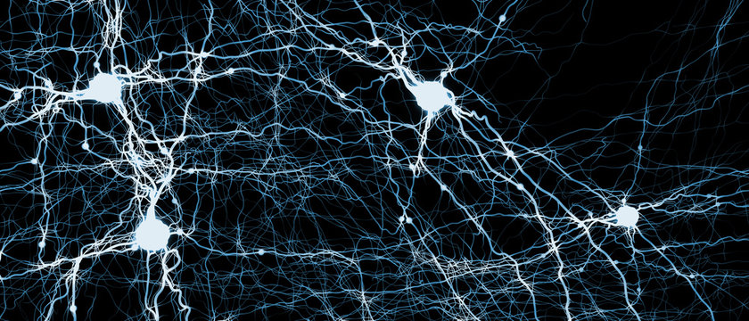 Signal transmitting neuron or nerve cell- 3d illustration