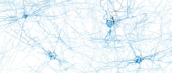 Signal transmitting neuron or nerve cell- 3d illustration