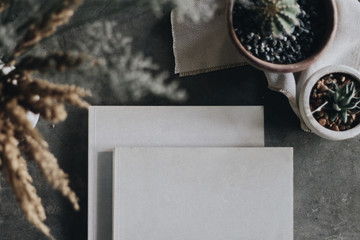 Pair of 2 cook recipe books with plain blank empty no title white copy space cover cacti plant pot vase napkin flat lay background backdrop Gray slate granite stone kitchen surface worktop counter top
