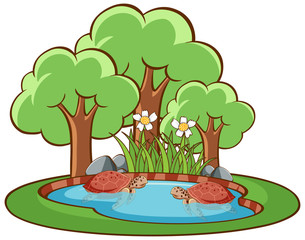 In de dag Kids Isolated picture of turtles in the pond