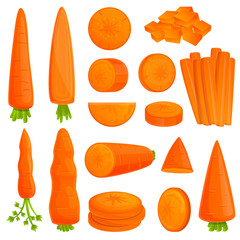 Carrot icons set. Cartoon set of carrot vector icons for web design