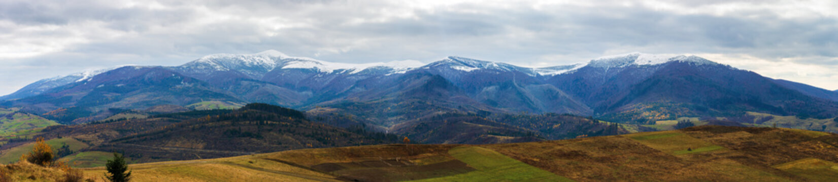borzhava mountain ridge with snow capped tops. beautiful countryside landscape on an overcast november day. cold and gloomy autumn weather. panoramic view