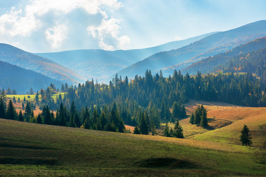 rural area of carpathian mountains in autumn. wonderful scenery of borzhava mountains in dappled light observed from podobovets village. agricultural fields on rolling hills near the spruce forest
