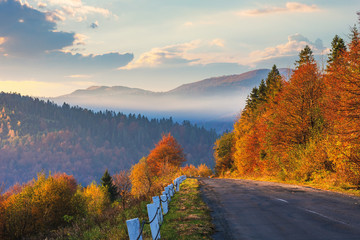 asphalt road through forest. beautiful mountain landscape. trees in fall foliage. foggy weather at sunrise. glowing clouds on the sky