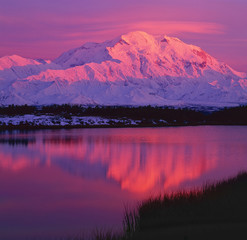 Acrylic Prints Candy pink Denali & Wonder Lake at sunset; Denali NP; Alaska