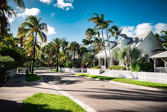Key West neighborhood street view with palm trees