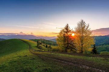 carpathian countryside at sunset in springtime. beautiful rural scenery with tree by the road. dirt pathway along the grassy rolling hills. distant ridge beneath a sky with clouds glowing before dusk