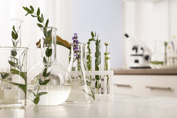 Fototapete - Laboratory glassware with different plants on table indoors