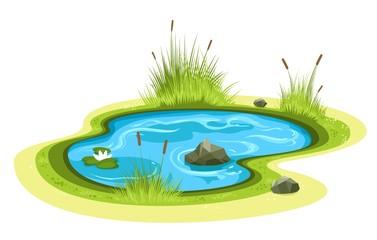Cartoon garden pond