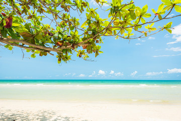 Wall Mural - Beautiful and Breathtaking tropical beach at Koh Chang  Island, Wonderful tropical beach for relaxation and travel, Special white sandy at the exotic beach