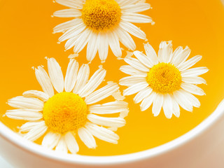 Herbal tea with fresh chamomile flowers in a cup