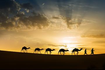 Foto op Plexiglas Marokko Silhouette of a caravan of five camels with nomads in the Sahara desert at sunrise.