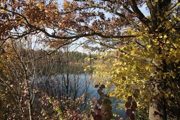Herbststimmung am See - Herbst / Jahreszeit