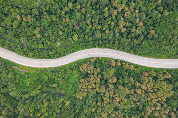 Aerial top view of pathway road in forest, view from drone