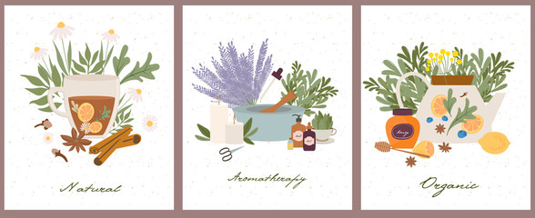 Apothecary of natural wellness, organic, aromatherapy, essential oils, incense, herbal tea, candles, wildflowers and herbs. Health and self-care concept. Vector Illustration. Wall mural