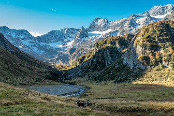 Hiking path at Timmelsjoch and Texelgruppe nature park leading to the Seebersee with the alpine mountains in the background and a dog in the foreground