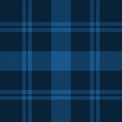 Beautiful classic blue plaid pattern vector